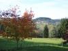 automne2014-4