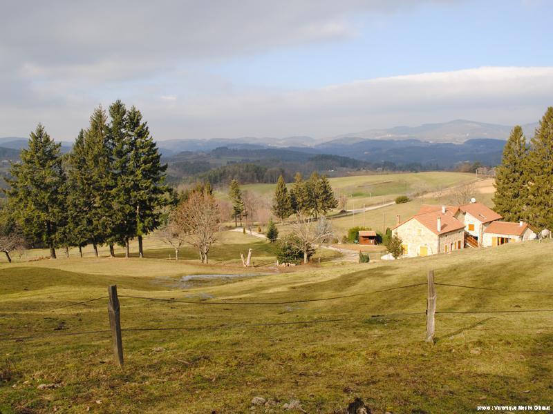 winter in Pâturage
