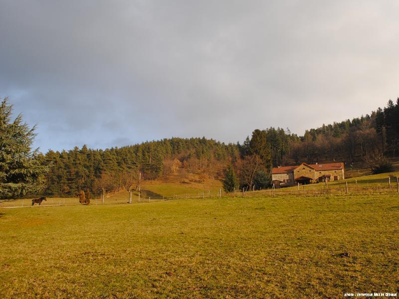 lieu-dit Pâturage en hiver
